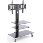 TV Stand with Mount for 65 Inch TVs and Lobbies