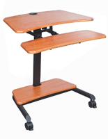 Stand Up Laptop Desk with Casters
