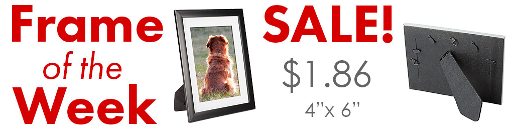 bulk picture frame specialists high quantity ordering low bulk pricing same day shipping