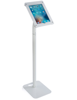 iPad Payment Kiosk for Retail Stores