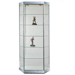 Hexagonal Display Case