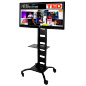 Office TV Stand