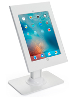 iPad Pro Vertical Stand for Retail Stores