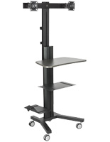 Multi-Monitor Standing Computer Cart for School Systems