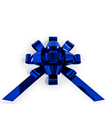 Metallic blue windshield bow for large appliances