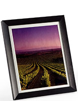 Matted Picture Frame