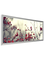 Silver Panoramic Picture Frame