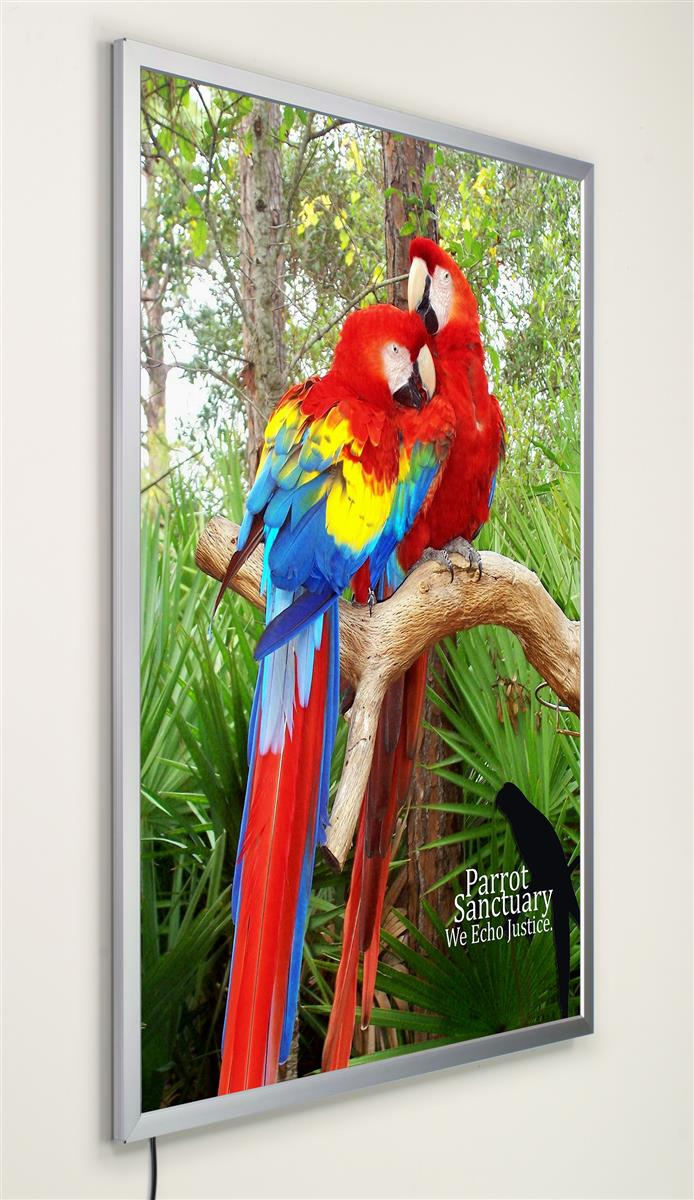 This Poster Frame Is Meant To Display 36 Quot X 48 Quot Graphics