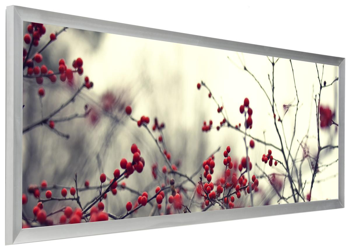 Panoramic Silver Frame 13.5 x 40 | Wall Mount